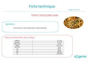 thumbnail of ft_torti-tricolore-bio